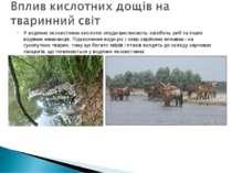 У водяних екосистемах кислотні опади викликають загибель риб та інших водяних...