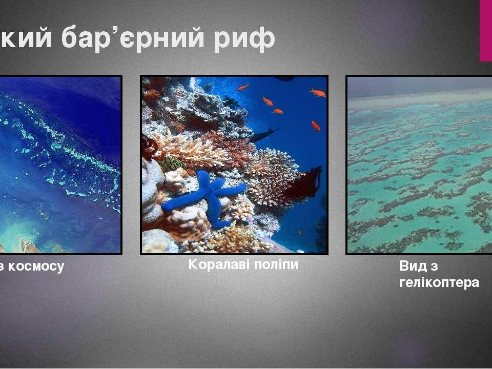 Великий бар'єрний риф Вид з космосу Коралаві поліпи Вид з гелікоптера