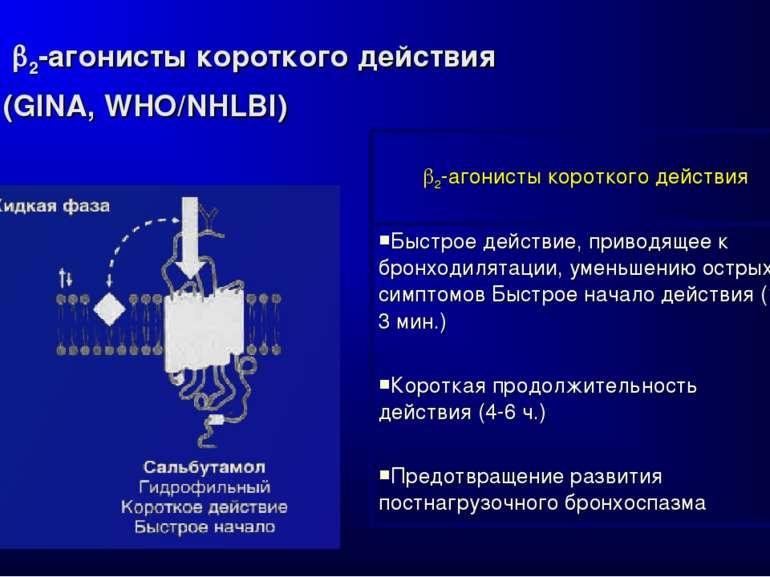 2-агонисты короткого действия (GINA, WHO/NHLBI) 2-агонисты короткого действия...