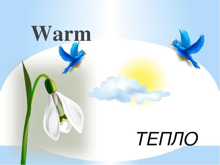 ТЕПЛО Warm