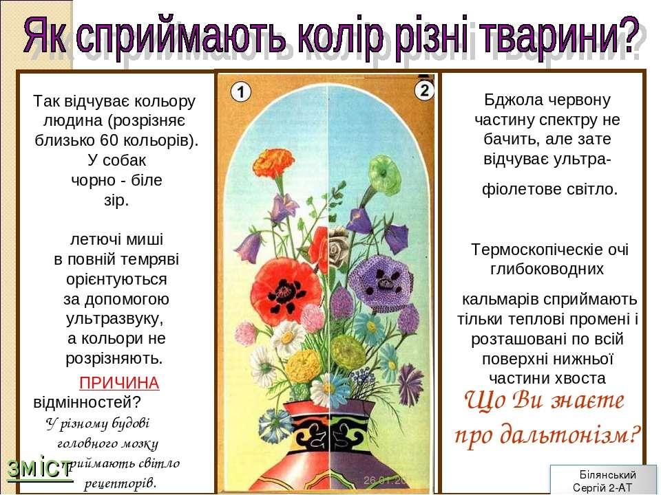 Що Ви знаєте про дальтонізм? Так відчуває кольору людина (розрізняє близько 6...