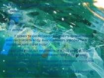 Усі види забруднень можна розподілити на: - хімічні - фізичні - біологі...