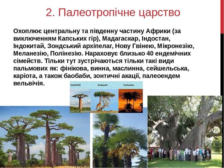 2. Палеотропічне царство Охоплює центральну та південну частину Африки (за ви...