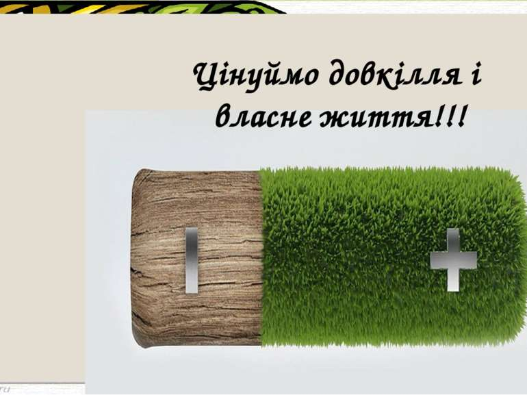 Цінуймо довкілля і власне життя!!!