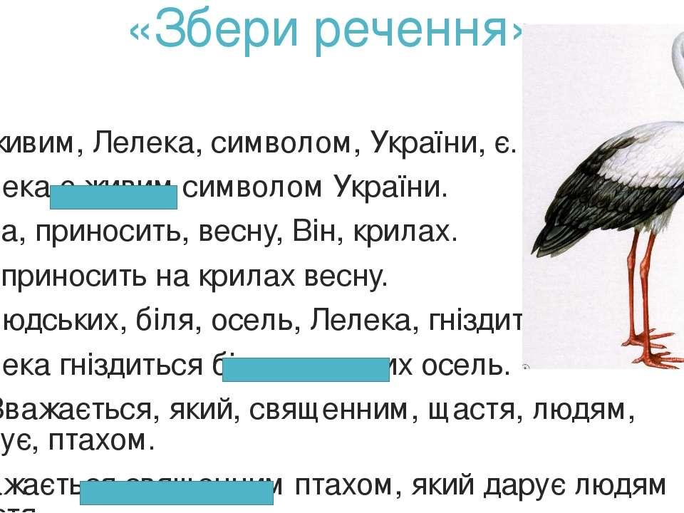 «Збери речення» 1) живим, Лелека, символом, України, є. Лелека є живим символ...
