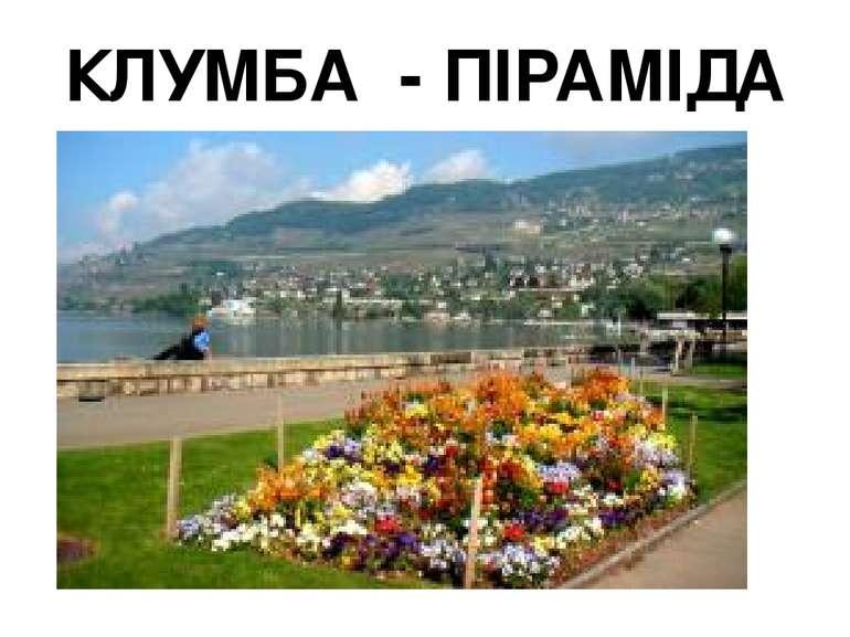 КЛУМБА - ПІРАМІДА
