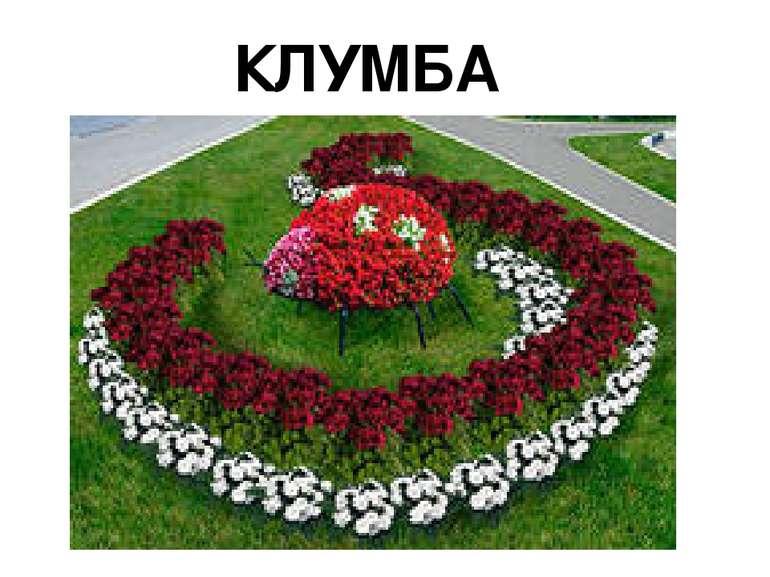"""КЛУМБА """"СОНЕЧКО"""""""
