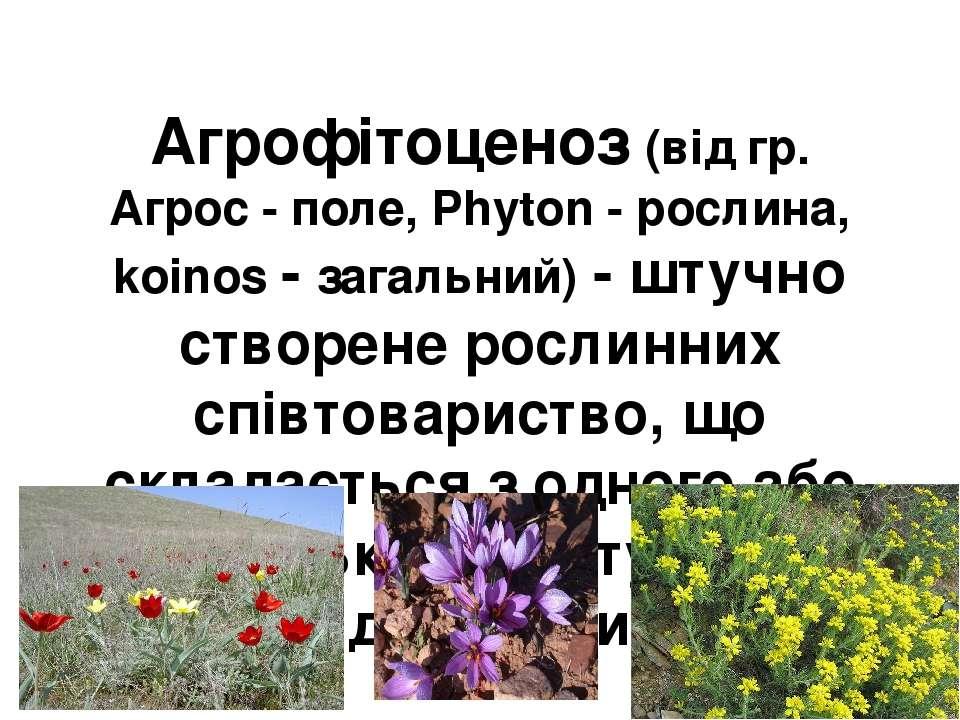 Агрофітоценоз (від гр. Агрос - поле, Phyton - рослина, koinos - загальний) - ...