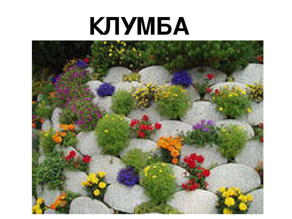 """КЛУМБА """"ВЕСЕЛКА"""""""