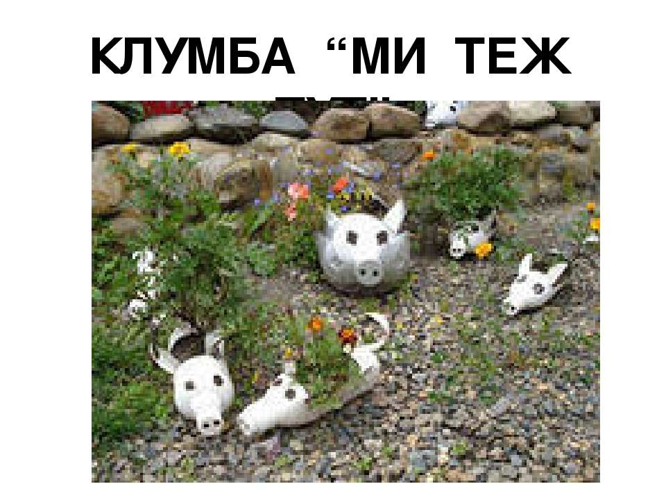 """КЛУМБА """"МИ ТЕЖ ТУТ"""""""