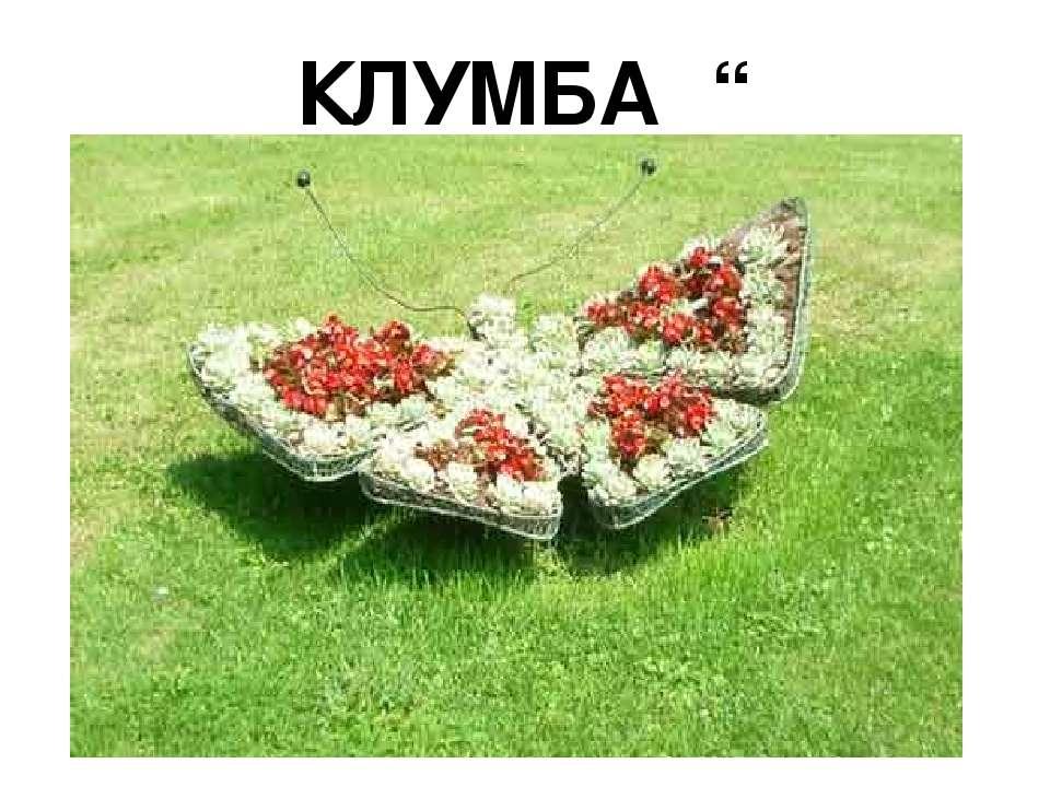 """КЛУМБА """" МЕТЕЛИК"""""""