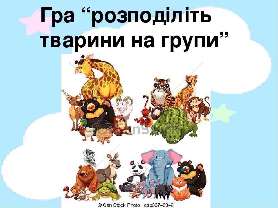 """Гра """"розподіліть тварини на групи"""""""