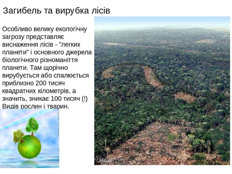 Загибель та вирубка лісів Особливо велику екологічну загрозу представляє висн...