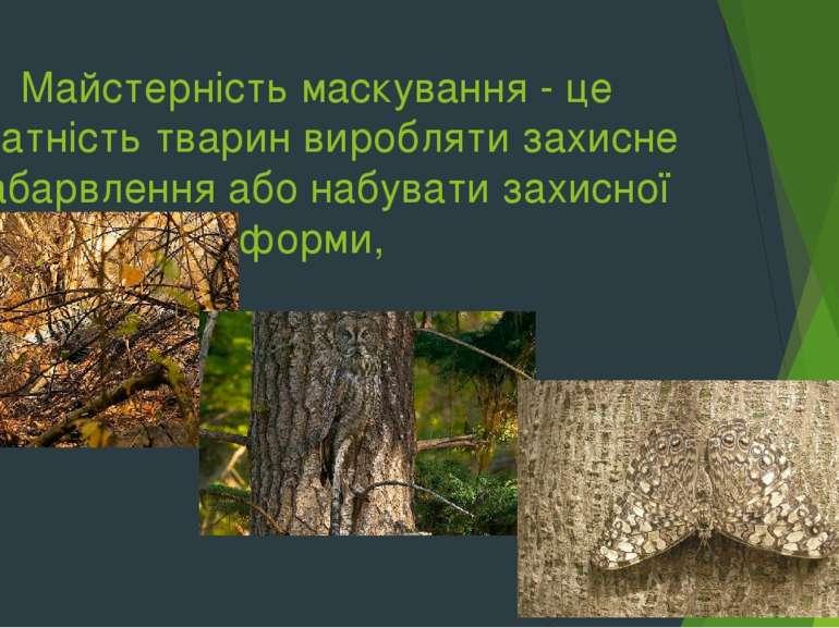 Майстерність маскування - це здатність тварин виробляти захисне забарвлення а...