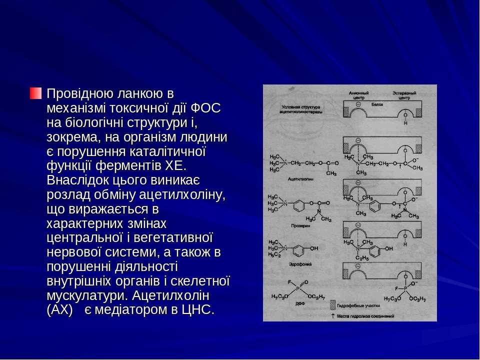 Провідною ланкою в механізмі токсичної дії ФОС на біологічні структури і, зок...
