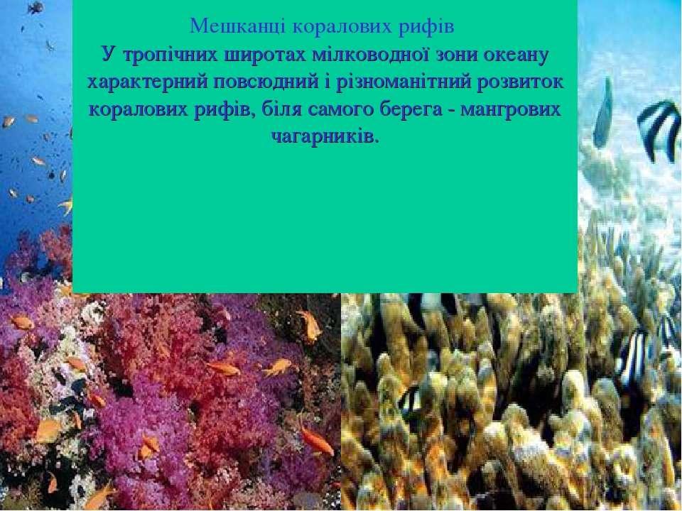 Мешканці коралових рифів У тропічних широтах мілководної зони океану характер...