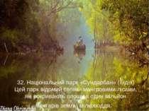 32. Національний парк «Сундарбан» (Індія) Цей парк відомий своїми мангровими ...