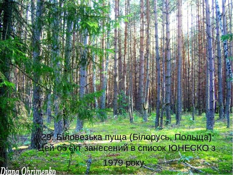 29. Біловезька пуща (Білорусь, Польща) Цей об'єкт занесений в список ЮНЕСКО з...