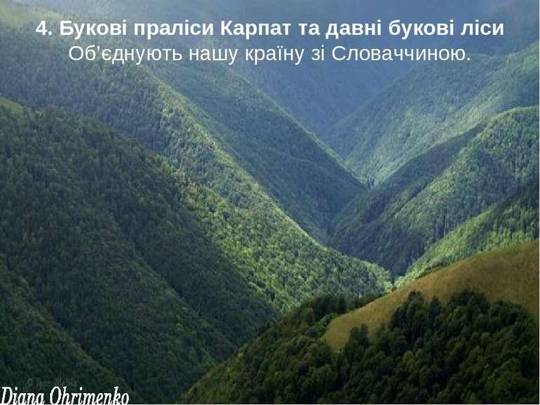 4. Букові праліси Карпат та давні букові ліси Об'єднують нашу країну зі Слова...