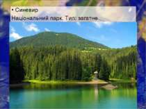 Синевир Національний парк. Тип: загатне