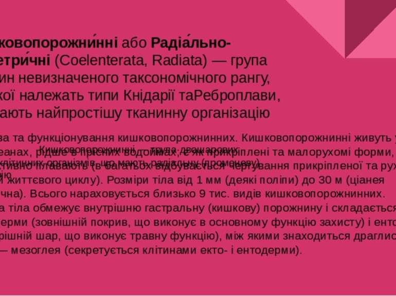 Кишковопорожни нніабоРадіа льно-симетри чні(Coelenterata, Radiata)— група...