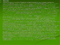 Живлення Раціони плазунів, як і способи добування їжі, вельми різноманітні; с...
