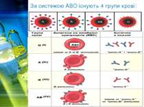 За системою АВО існують 4 групи крові: