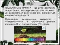 КИСЛОТНІСТЬ ГРУНТУ – це дуже важливий для успішного вирощування рослин показн...