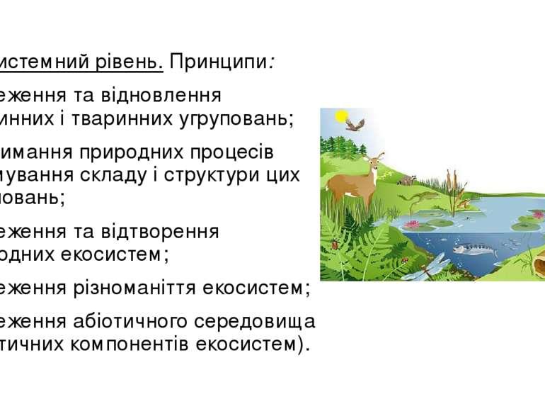 Екосистемний рівень.Принципи: збереження та відновлення рослинних і тваринни...