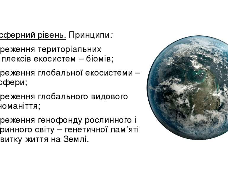 Біосферний рівень.Принципи: збереження територіальних комплексів екосистем –...