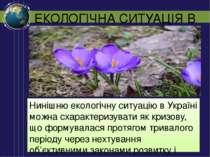 ЕКОЛОГІЧНА СИТУАЦІЯ В УКРАЇНІ Нинішню екологічну ситуацію в Україні можна сха...