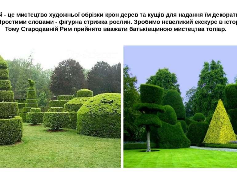 Топіарій- це мистецтво художньої обрізки крон дерев та кущів для надання їм ...