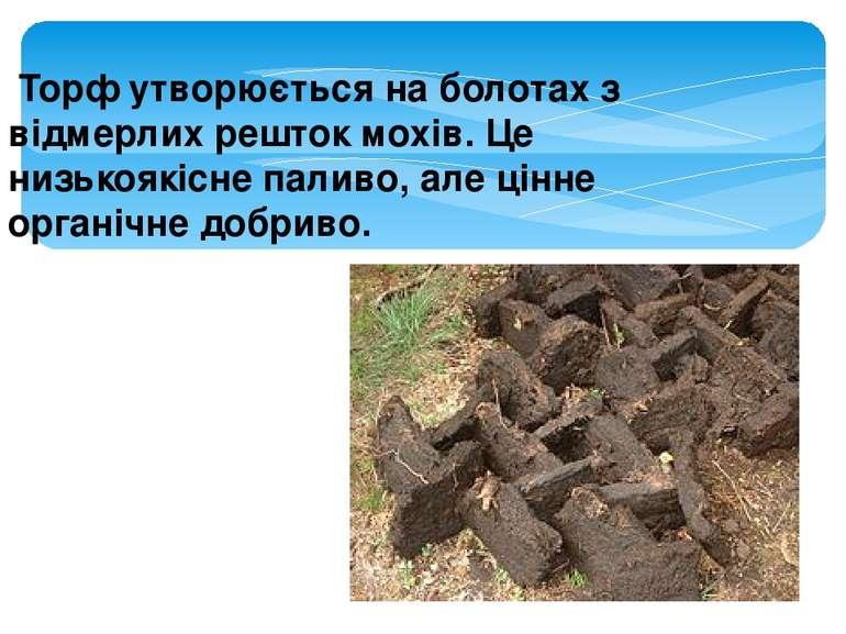 Торф утворюється на болотах з відмерлих решток мохів. Це низькоякісне паливо...