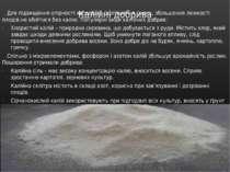 Калійні добрива Для підвищення опірності хворобам, поліпшення смаку, збільшен...