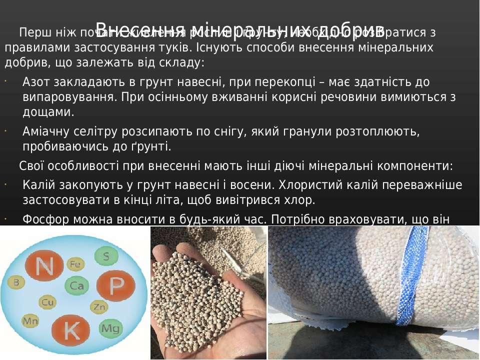 Внесення мінеральних добрив Перш ніж почати живлення рослин і ґрунту, необхід...