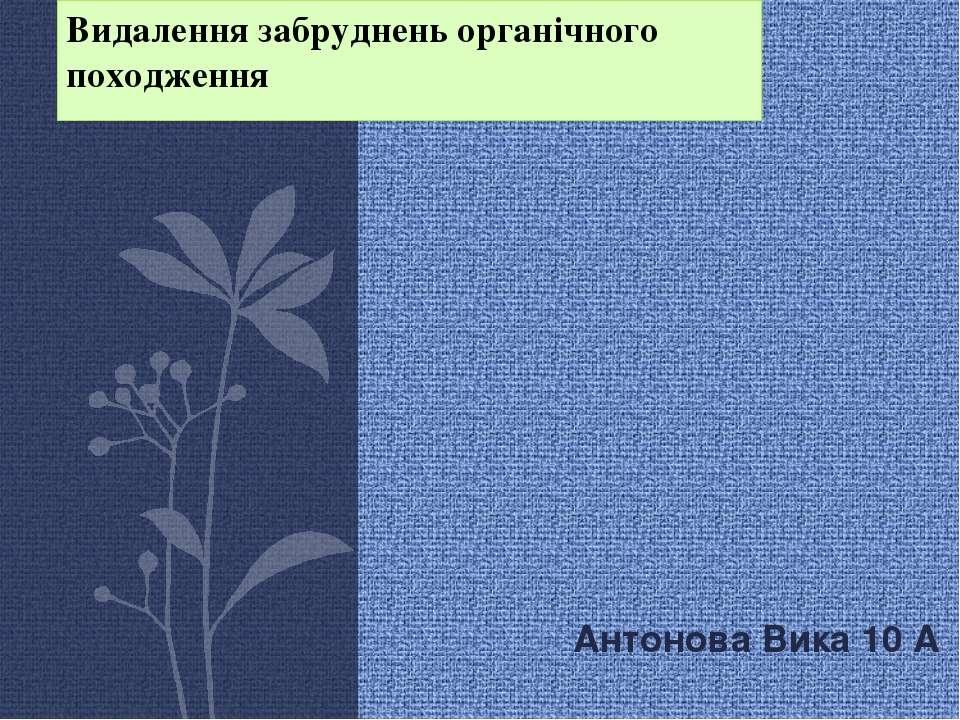 Видалення забруднень органічного походження Антонова Вика 10 А