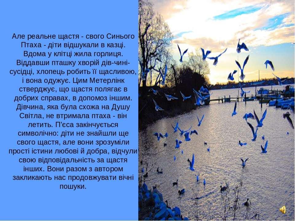 Але реальне щастя - свого Синього Птаха - діти відшукали в казці. Вдома у клі...