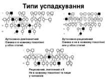 Типи успадкування Аутосомно-домінанатний Ознака є в кожному поколінні у обох ...