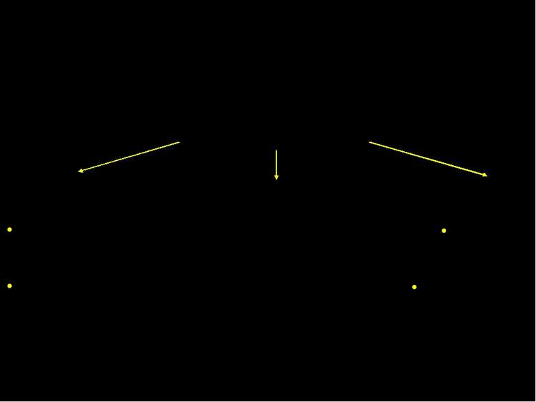 Мітохондріальні Мембранні Рецептори смерті – TNF, Fas/APO-1 (CD95), DR3/WSL В...