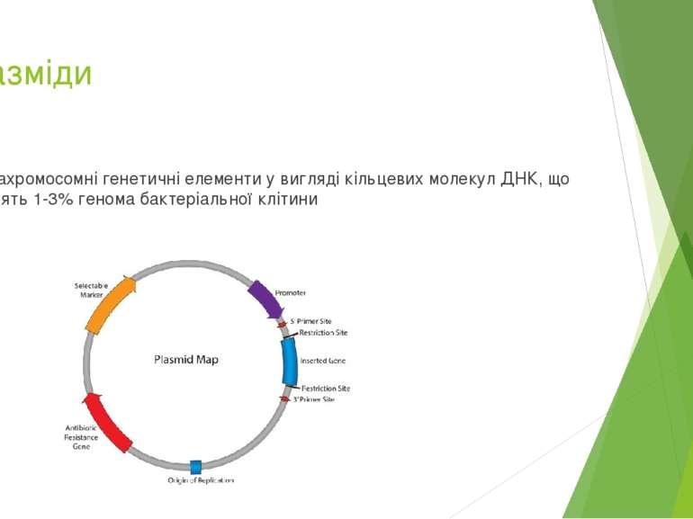 Плазміди позахромосомні генетичні елементи у вигляді кільцевих молекул ДНК, щ...