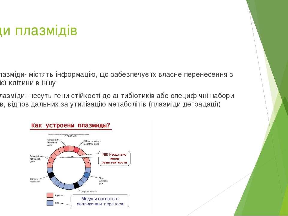 Види плазмідів Р-плазміди- містять інформацію, що забезпечує їх власне перене...