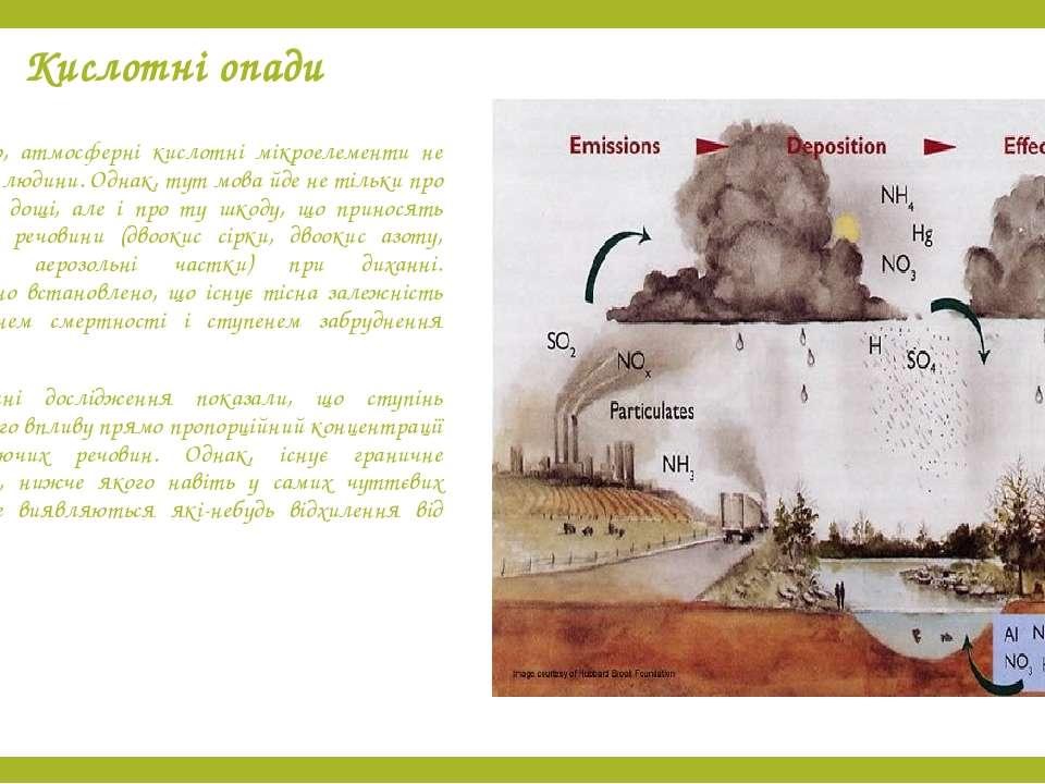 Кислотні опади Природно, атмосферні кислотні мікроелементи не щадять і людини...