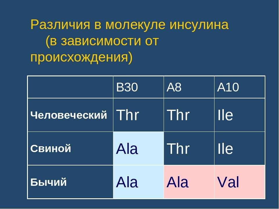 Различия в молекуле инсулина (в зависимости от происхождения)