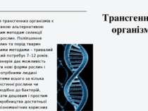Трансгенний організм Виведення трансгенних організмів є перспективною альтерн...