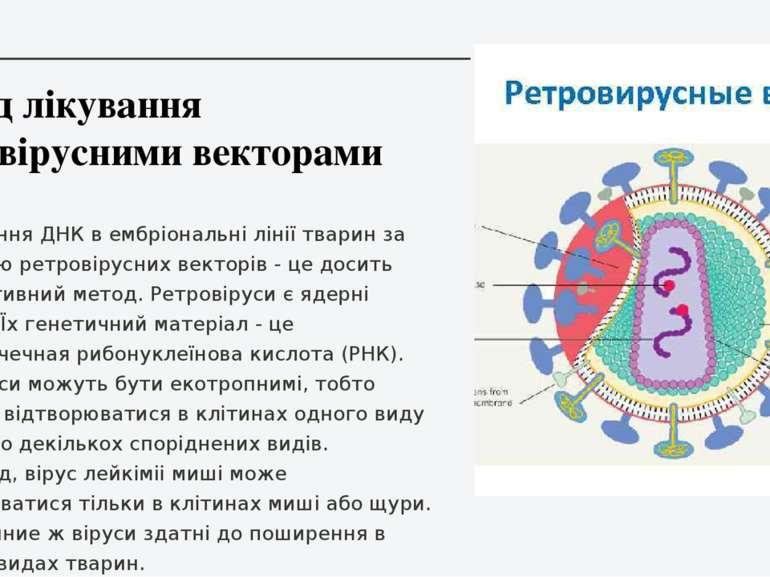 Метод лікування ретровірусними векторами Перенесення ДНК в ембріональні лінії...