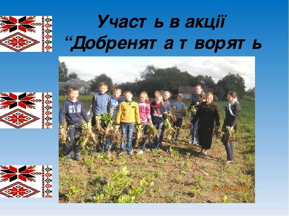 "Участь в акції ""Добренята творять країну Добра"""