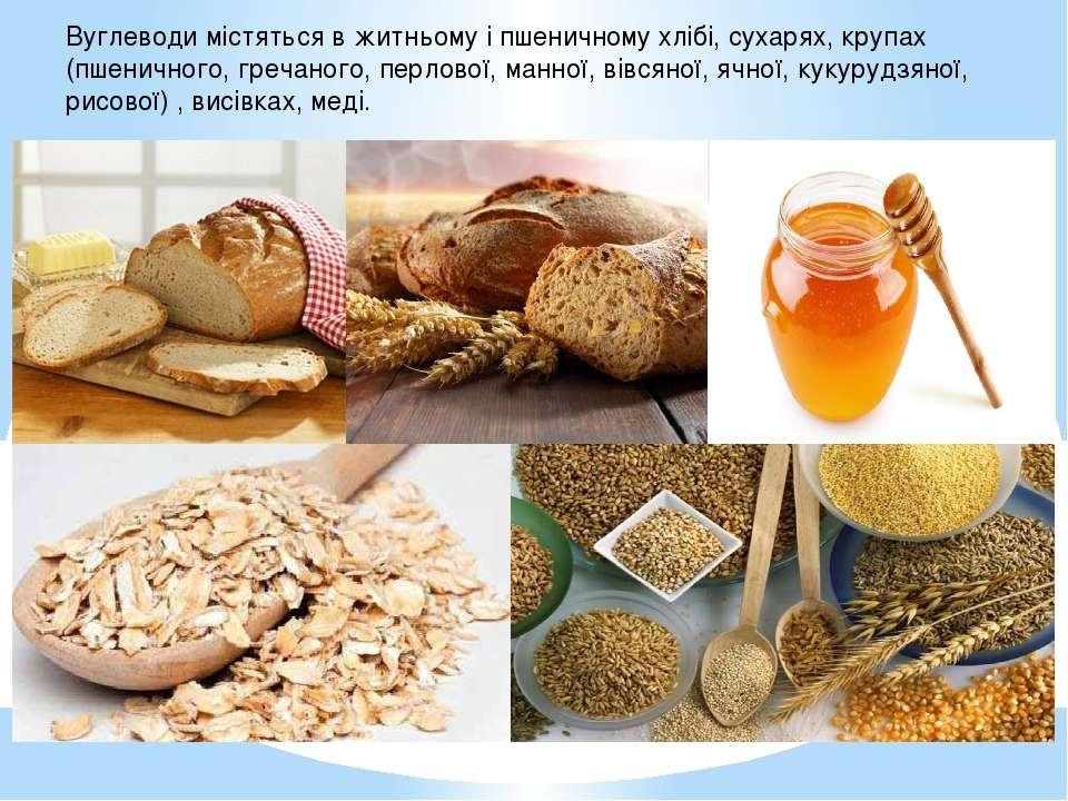 Вуглеводи містяться в житньому і пшеничному хлібі, сухарях, крупах (пшеничног...