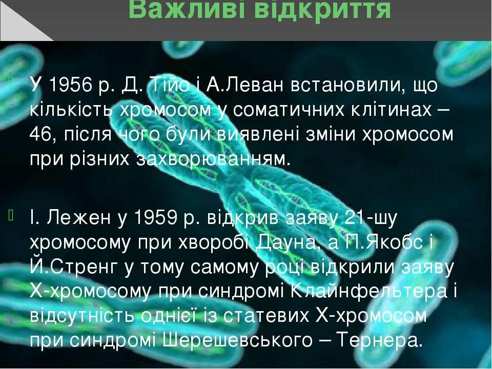Важливі відкриття У 1956 р. Д. Тійо і А.Леван встановили, що кількість хромос...