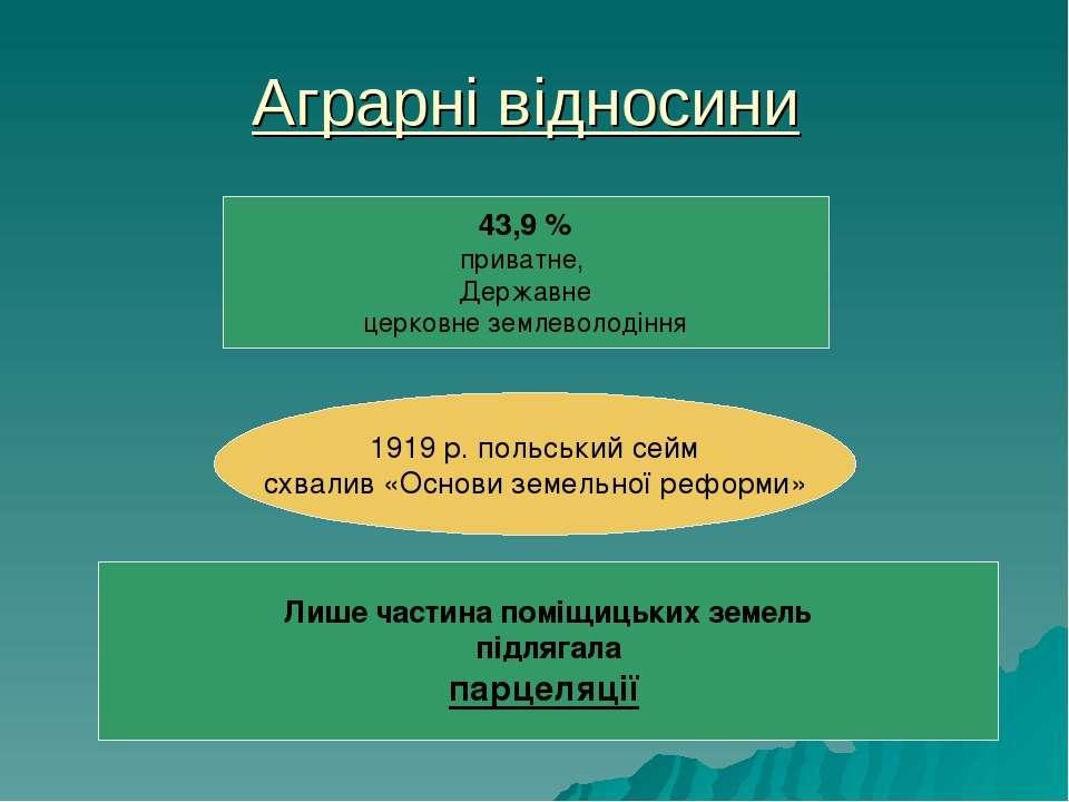 Аграрні відносини 43,9% приватне, Державне церковне землеволодіння 1919 р. п...
