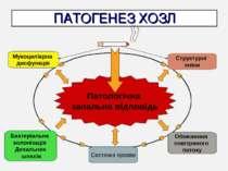 ПАТОГЕНЕЗ ХОЗЛ Патологічна запальна відповідь Мукоциліарна дисфункція Бактері...